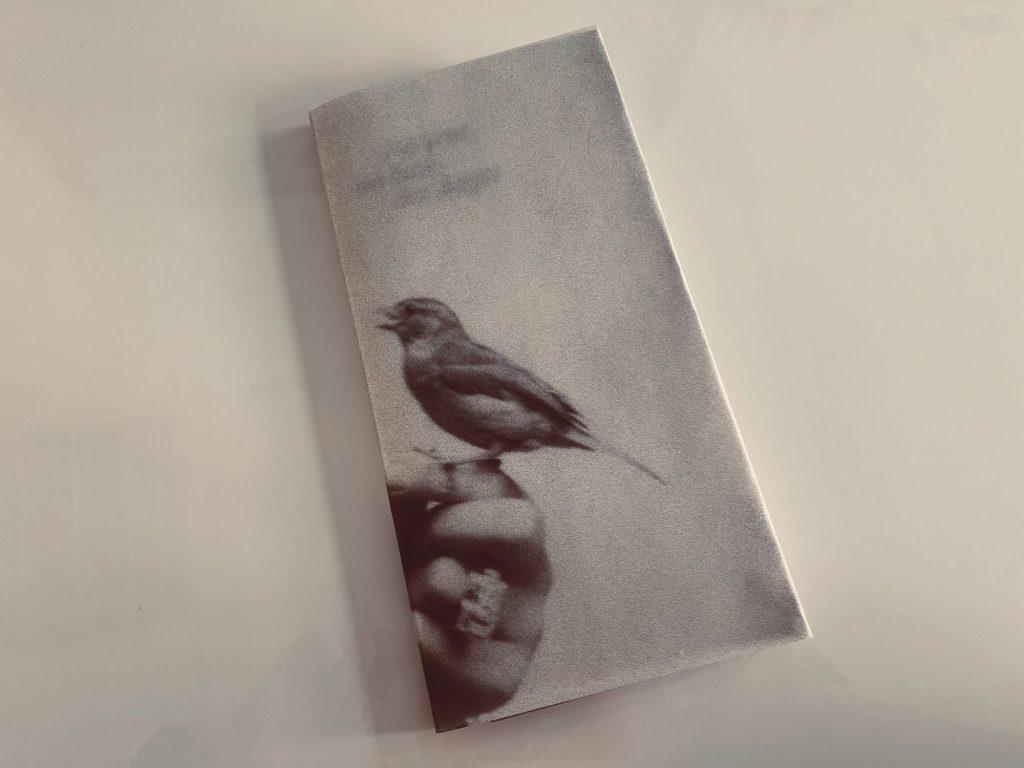 Izzi_or_not_conserverie_exposition_oiseaux_5